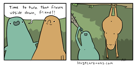 Flip That Frown